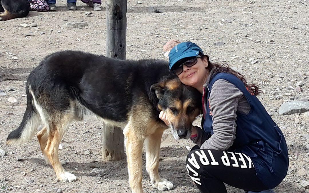 TRIP TO ARGENTINA. Scritto di Eleonora Dell'Orca, volontaria di Roma, partita ad inizio maggio per le Ande argentine.