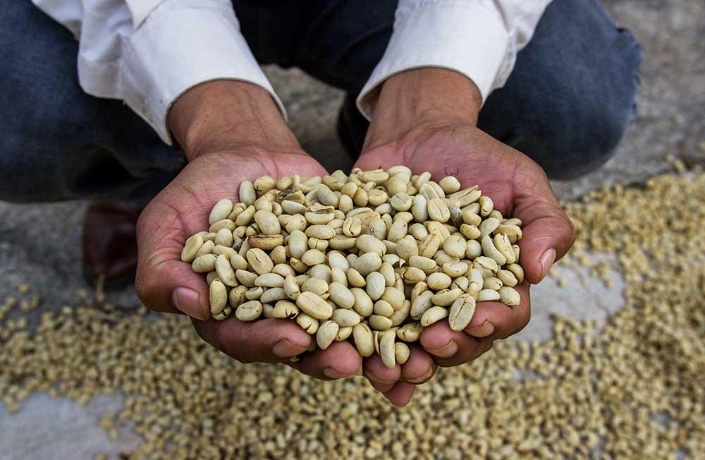 Nueva Esperanza – Il nostro caffè equo e solidale